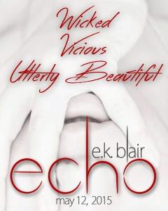 Echo Teaser A