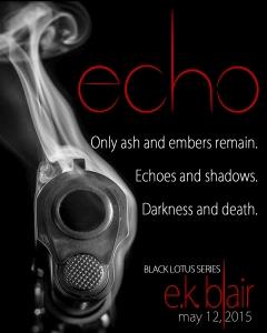 Echo Teaser B