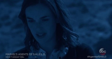 shield 3_5_1