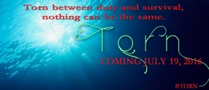 Torn Facebook Banner_NoCover_edited-1